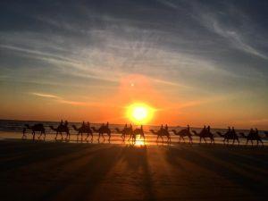 Broome,  . . . #camels #broome #ilovebroome #cablebeach #wa #westernaustralia #justanotherdayinWA #australia #nomad #nomade #vidanomade #nomadlife #backpacker #backpackerlife #livingthedream #instagram #instaphoto #instagramer #instatravel #travel #traveller #traveling #travelingram #travelingtheworld #unavueltaporeluniverso #workingholiday