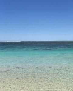 Colores del paraiso  Turquoise Bay,  . . . #turqouisebay #turqouise #exmouth #caperangenationalpark #wa #westernaustralia #justanotherdayinwa #australia #instagram #instaphoto #instagramer #instatravel #travel #traveller #travelingram #travelingtheworld #travelingaroundtheworld #nomad #nomade #nomadlife #backpacker #backpackerlife #livingthedream #vidanomade #unavueltaporeluniverso