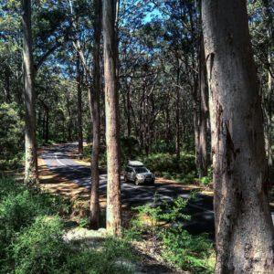 .  Margaret River,  . . #margaretriver #cavesroad #road #landscape #southwest #wa #westernaustralia #australia #instagram #instaphoto #instatravel #travel #traveller #traveling #backpacker #backpackerlife #nomad #nomade #nomadlife #vidanomade #unavueltaporeluniverso