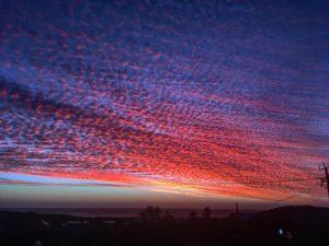 Margs, Margs, Margs ❤️ .  Prevelly,  . . #theseagardencafe #sunset #margaretriver #wa #westernaustralia #southwest #australia #instagram #instatravel #travel #traveller #traveling #travelingtheworld #unavueltaporeluniverso #nomad #nomade #nomadlife #backpacker #backpackerlife #mochilero #livingthelife #aussielife